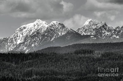 Photograph - Golden Ears Mountains B W by Sharon Talson