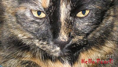 Photograph - Golden Eyes. Hello Pearl by Oksana Semenchenko