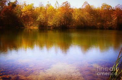 Photograph - Golden Fall by Scott B Bennett