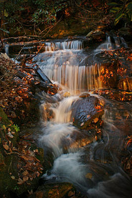 Photograph - Golden Falls by David Frankel