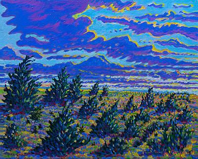 Golden Field And Cedars Art Print