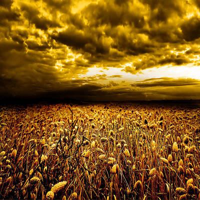 Field. Cloud Digital Art - Golden Fields by Jacky Gerritsen