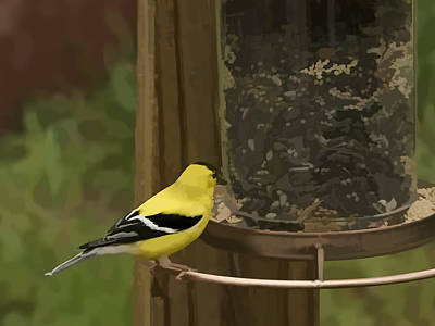 Photograph - Golden Finch by Penny Lisowski