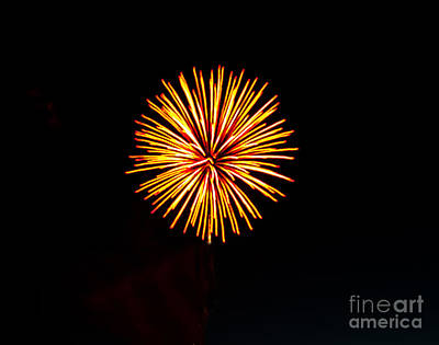 Golden Fireworks Flower Print by Robert Bales