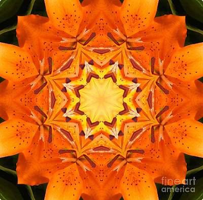 Golden Flower - Abstract - Kaleidoscope2 Art Print by Barbara Griffin