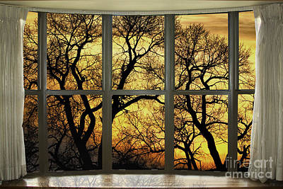Photograph - Golden Forest Bay Picture Window View by James BO Insogna