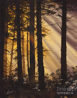 Golden Forest Light Art Print by James Williamson