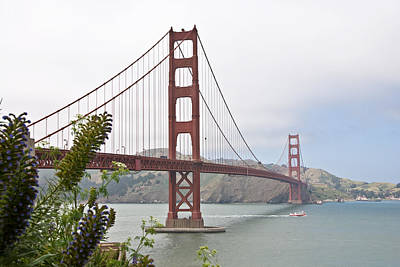 Photograph - Golden Gate Bridge 3 by Shane Kelly
