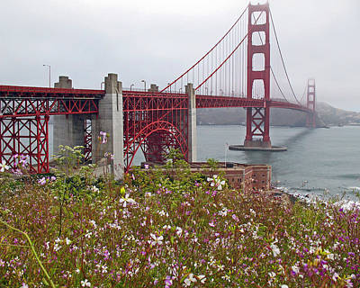 Golden Gate Bridge And Summer Flowers Art Print