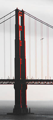 Photograph - Golden Gate Bridge - Sunset With Bird by Ben and Raisa Gertsberg