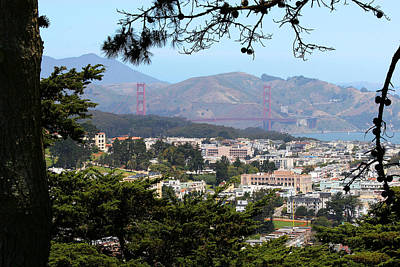 Photograph - Golden Gate From Buena Vista Park by Robert Woodward