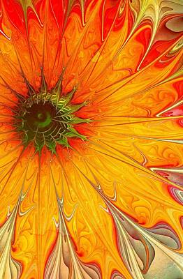 Framed Art Digital Art - Golden Gazania by Amanda Moore