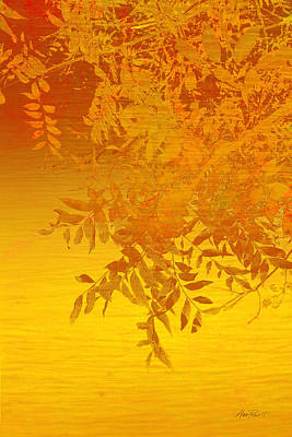 Digital Art - Golden Glow -nature - Art by Ann Powell