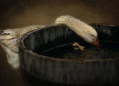 Golden Goose Print by Robin-lee Vieira