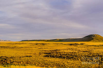 Americana Photograph - Golden Grassland by Gib Martinez