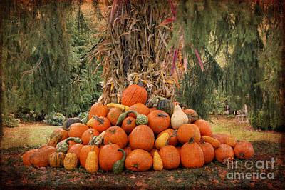 Photograph - Golden Harvest by David Birchall