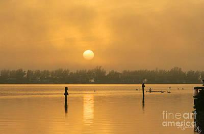 Photograph - Golden Haze by Mariarosa Rockefeller