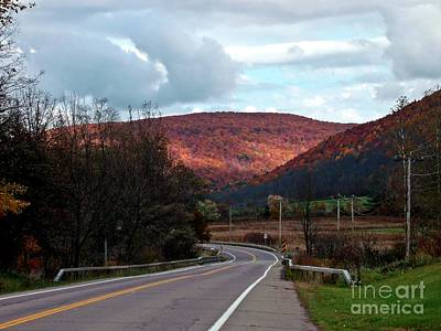 Photograph - Golden Hills Of Autumn by Christian Mattison