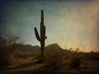 Sugar Skulls - Golden Hour in the Desert  by Lucinda Walter