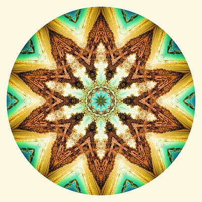 Photograph - Golden Hour Mandala by Beth Sawickie