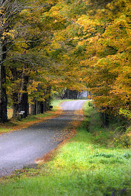 Photograph - Golden Journey Down Autumn Roads by Christina Rollo