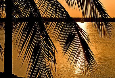 Photograph - Florida Keys Golden Sunset by Ginger Wakem