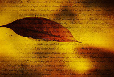 Photograph - Golden Leaf 1 by Jenny Rainbow
