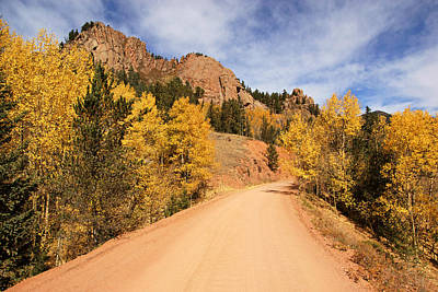 Photograph - Golden Leaves Along Gold Camp Road No.10 by Daniel Woodrum