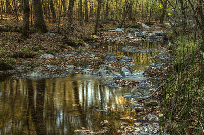 Golden Light In Arkansas Print by Linda Unger