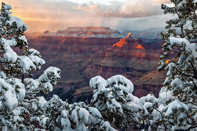 South Rim Photograph - Golden Light On Isis Temple by Guy Schmickle