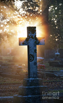 Grave Photograph - Golden Light by Tim Gainey