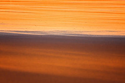 Photograph - Golden Light Warm Sand by Jeff Sinon