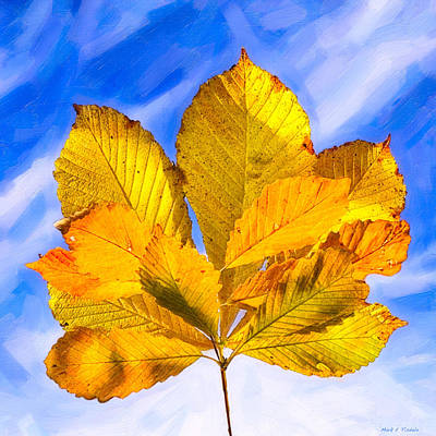 Photograph - Golden Memories Of Fall by Mark E Tisdale