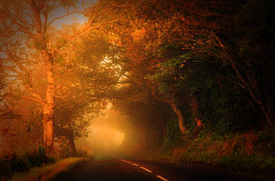 Photograph - Golden Mist On The Scottish Road by Jenny Rainbow