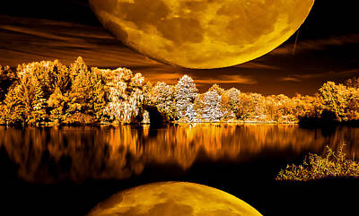 Golden Moon Pond Art Print