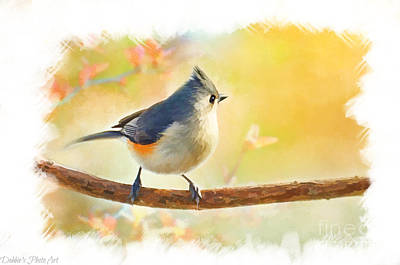 Tufted Titmouse Photograph - Golden Morning Tufted Titmouse - Digital Paint II by Debbie Portwood