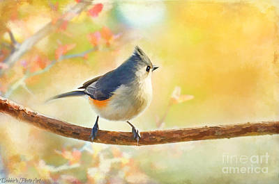 Tufted Titmouse Photograph - Golden Morning Tufted Titmouse - Digital Paint I by Debbie Portwood