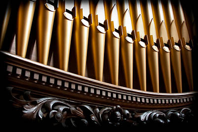 Golden Organ Pipes Art Print