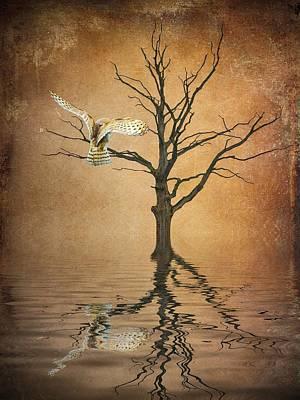 Barn Digital Art - Golden Owl by Sharon Lisa Clarke