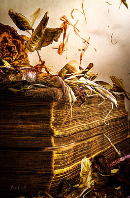 Golden Pages Falling Flowers Art Print by Bob Orsillo