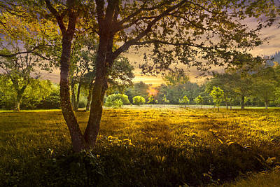 Golden Pastures Art Print by Debra and Dave Vanderlaan