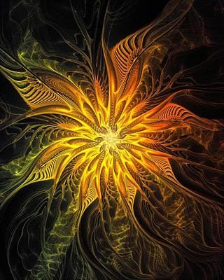 Framed Art Digital Art - Golden Poinsettia by Amanda Moore