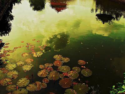 Golden Pond Art Print by Yen