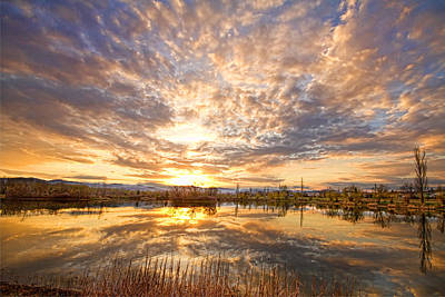 Bo Insogna Photograph - Golden Ponds Scenic Sunset Reflections 2 by James BO  Insogna