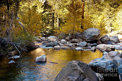 Golden Pool On Roaring River  1-7797 Art Print by Stephen Parker