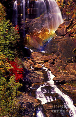 Golden Rainbow Art Print