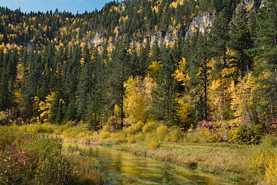 Photograph - Golden Reflection Along The Little Spearfish by Dakota Light Photography By Dakota