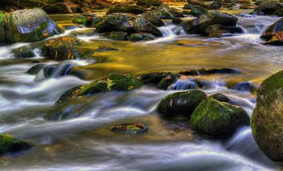 Nantahala Photograph - Golden Reflection by Greg and Chrystal Mimbs