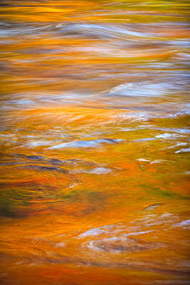 Photograph - Golden Reflection by Jeff Sinon