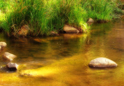 Photograph - Golden Reflections by Michelle Wrighton